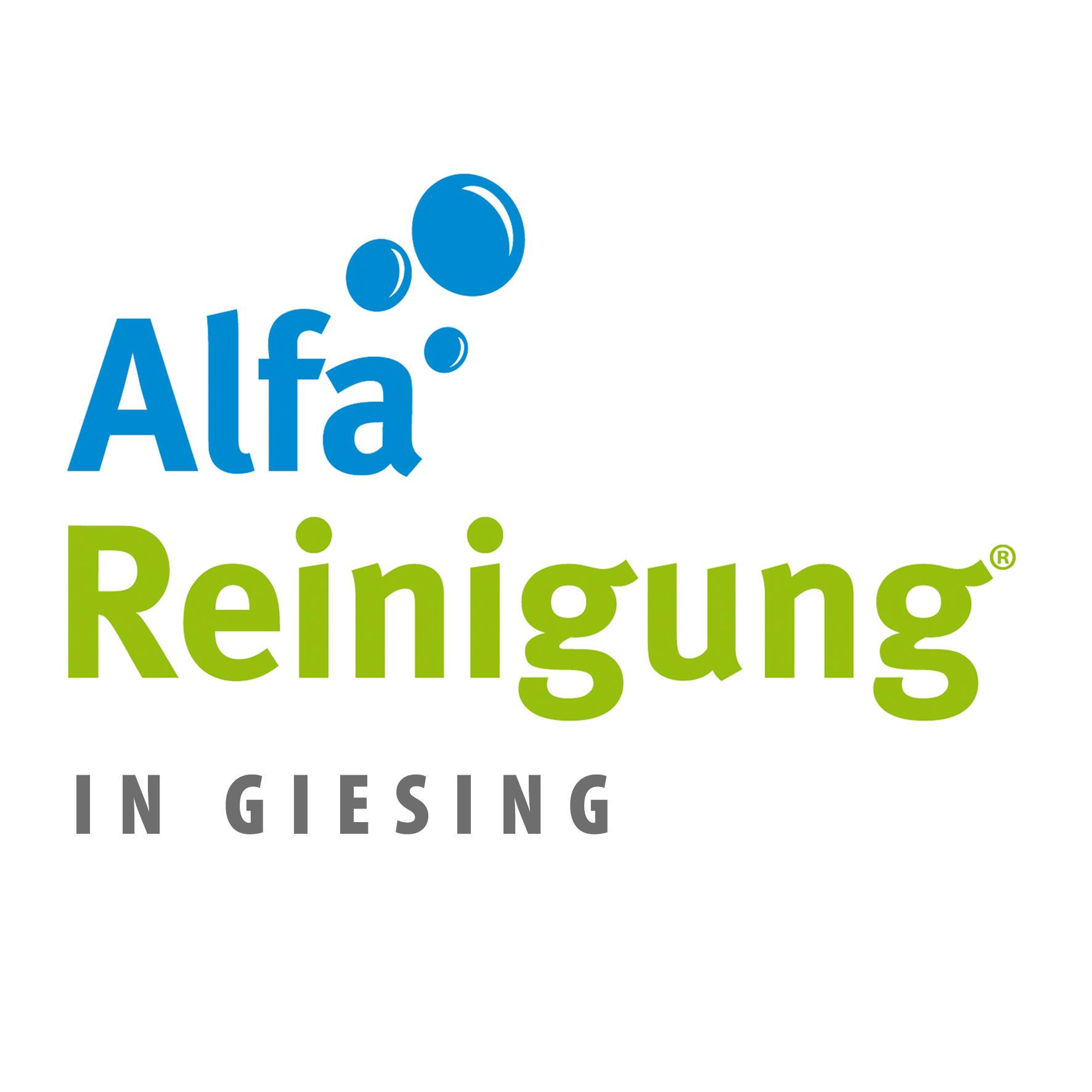 Alfa Reinigung Harras, Plinganserstraße 32 in München