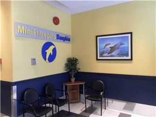 Mini Dauphin à Montréal