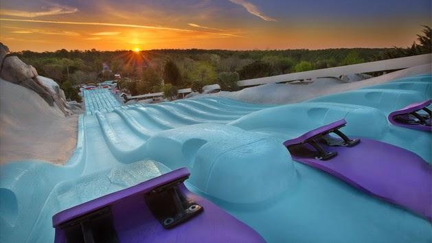 Walt Disney World® Resort image 69
