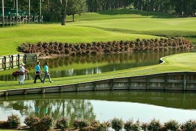Sawgrass Marriott Golf Resort & Spa image 10