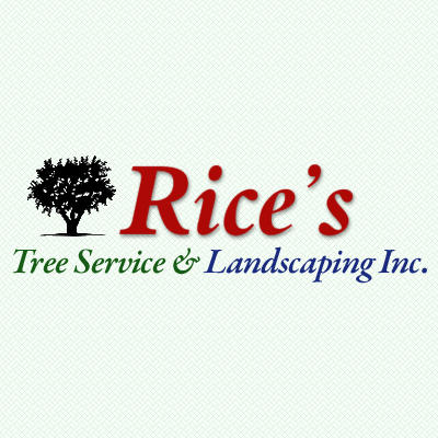 Rice's Tree Service & Landscaping image 4
