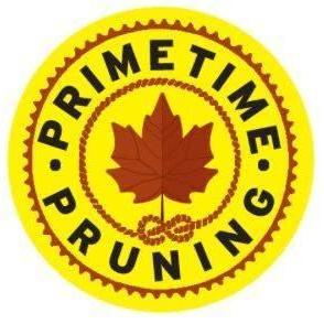 Primetime Pruning