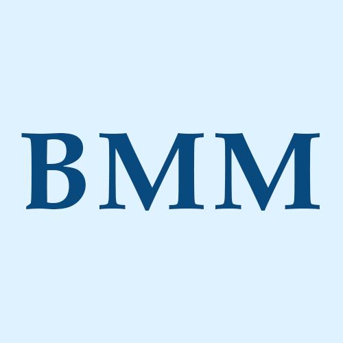 BM & Michaels, LLC