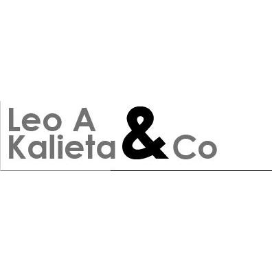 Leo A Kalieta & Co - Land Surveyor