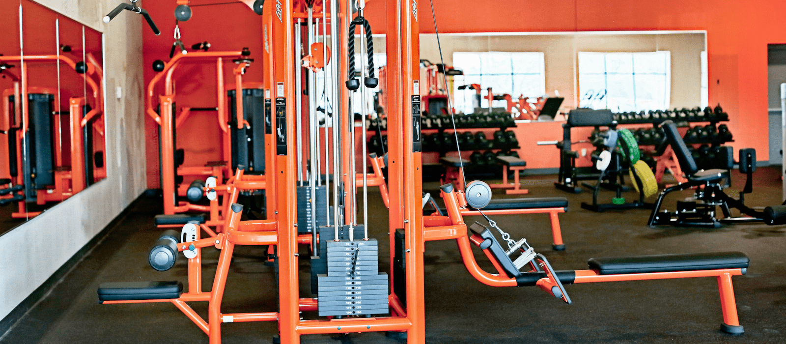 Fitaholic Fitness Ham Lake image 1