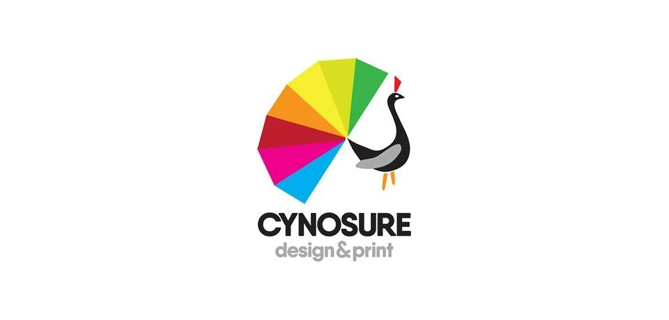 CYNOSURE design & print