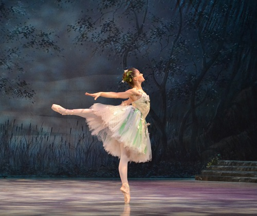 Palm Beach Ballet Classes