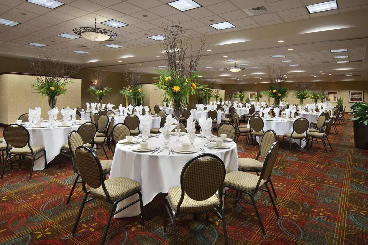Hilton Garden Inn Chicago OHare Airport image 6