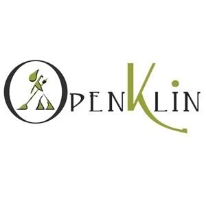 Openklin Impresa di Pulizie