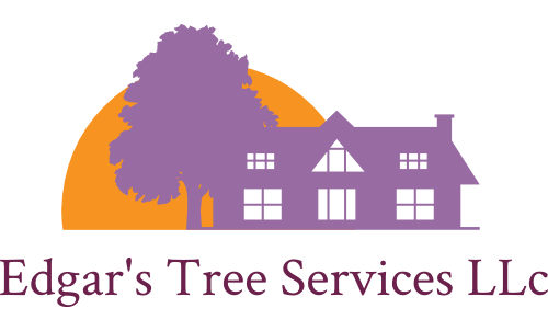 Edgar's Tree Services image 1