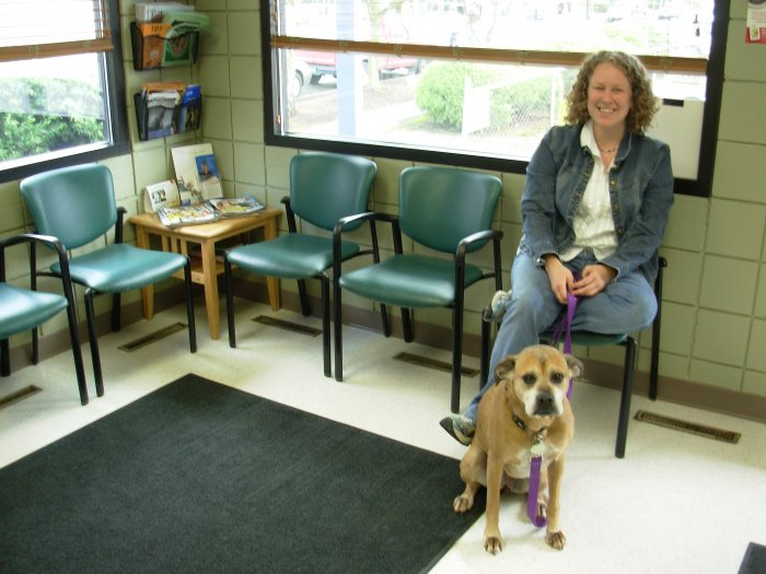 VCA Woodstock Animal Hospital image 2