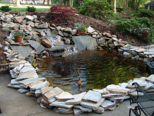 Lawngevity Landscaping & Maintenance, LLC image 5