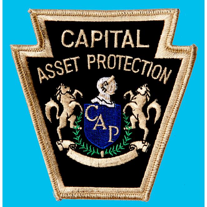 Capital Asset Protection, Inc.