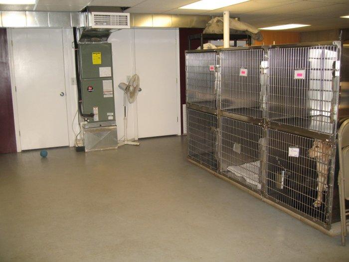 VCA Riverside Veterinary Hospital image 0