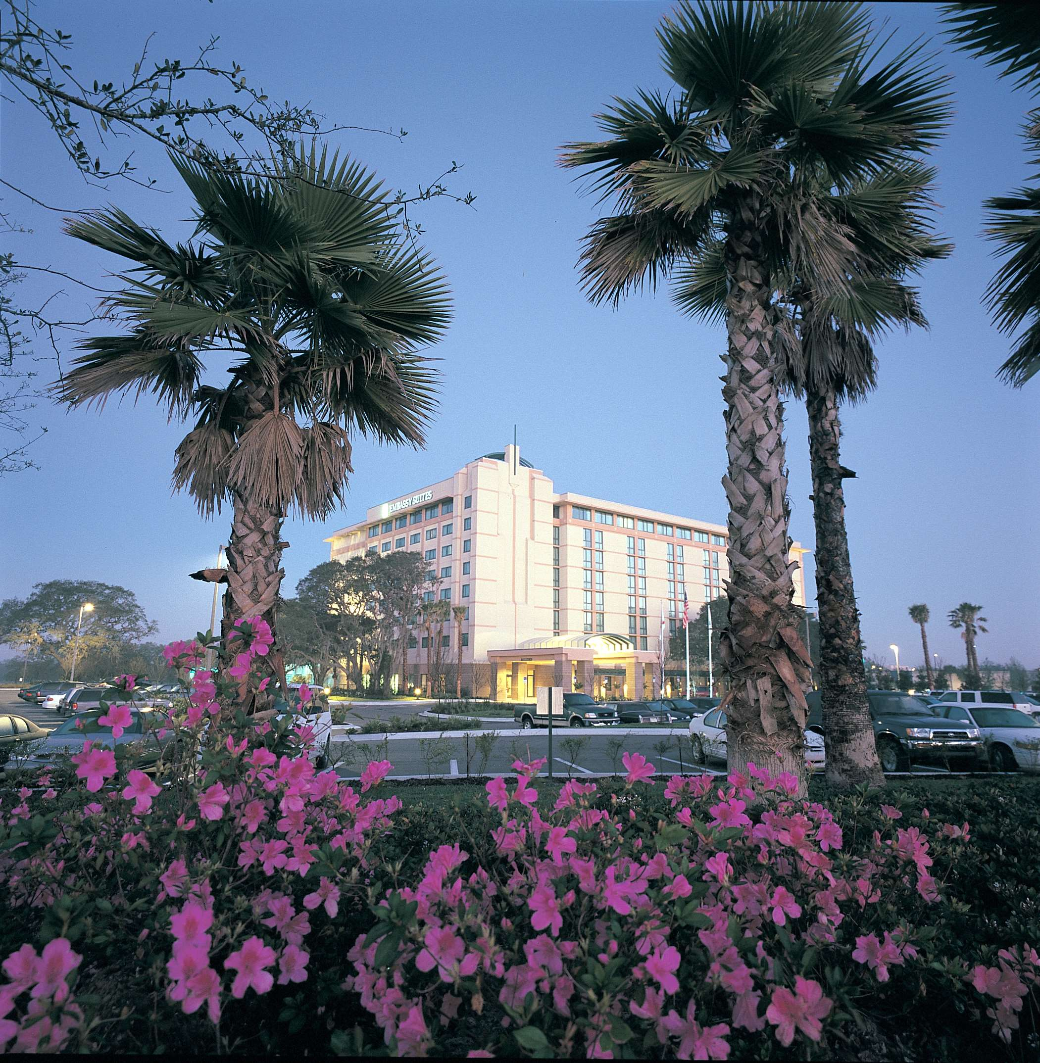 Embassy Suites by Hilton Tampa USF Near Busch Gardens image 1