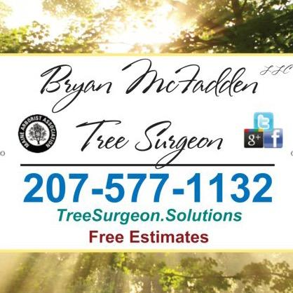 Bryan McFadden LLC Tree Surgeon