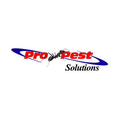 Pro-Pest Solutions image 0