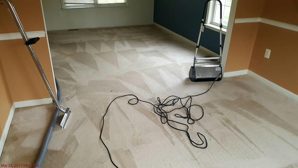 Absolute Carpet & Tile Cleaning image 13