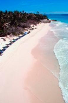 Pella Travel Inc image 4