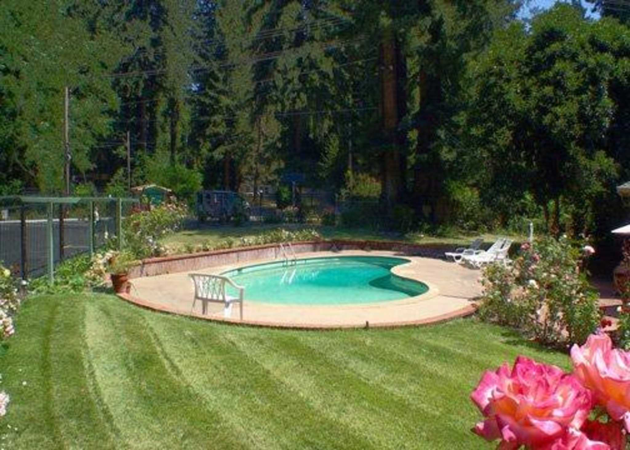 Quality Inn & Suites Santa Cruz Mountains image 3