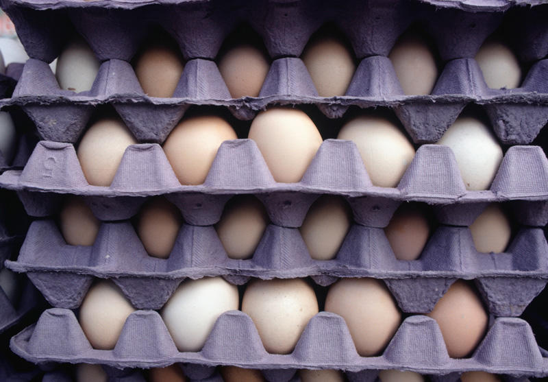 Eierhandel Holemans