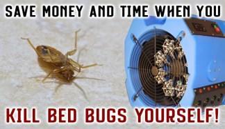 TLC Bed Bugs K-9 Inspection Service image 6