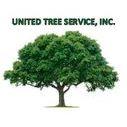 United Tree Service Inc.