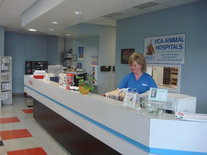 VCA St. Clair Shores Animal Hospital image 2