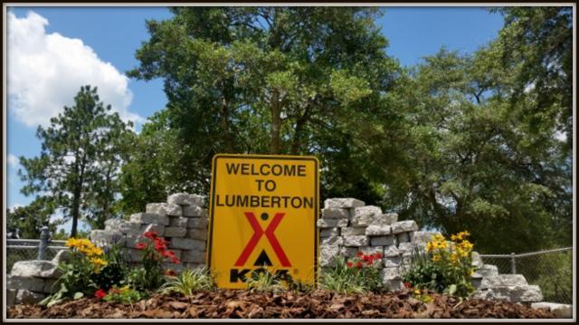 Lumberton / I-95 KOA Journey image 39