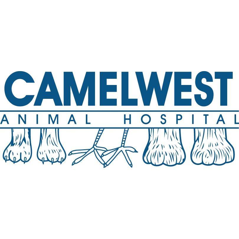 Camelwest Animal Hospital