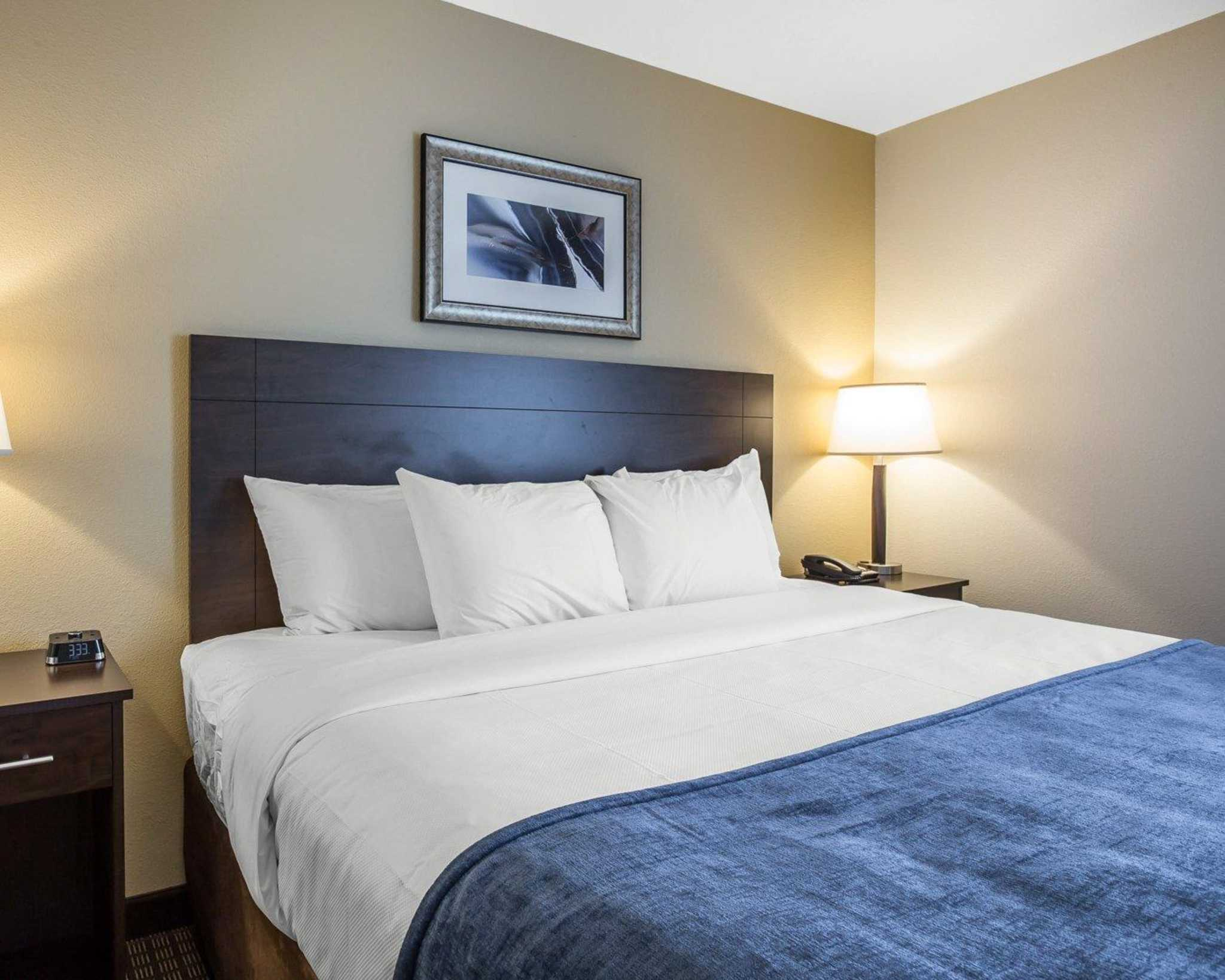 MainStay Suites Cartersville - Emerson Lake Point image 16