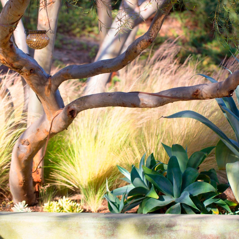 All Seasons Gardening & Landscaping image 1