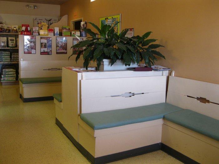 VCA El Mirage Animal Hospital image 3
