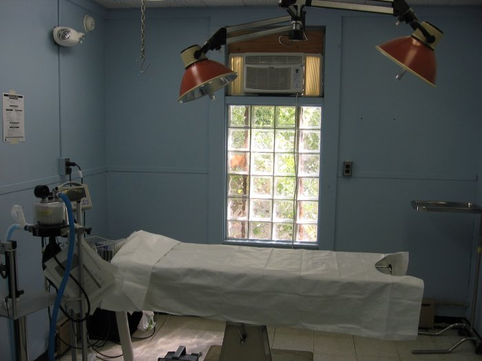 VCA Windham Animal Hospital image 1