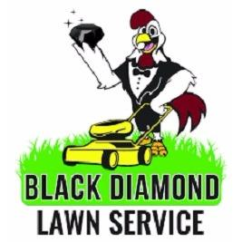 lawn black dating site Black senior dating is the hottest new dating site for single black seniors who want to connect with other singles, who love life and are enjoying their golden years, black senior dating.