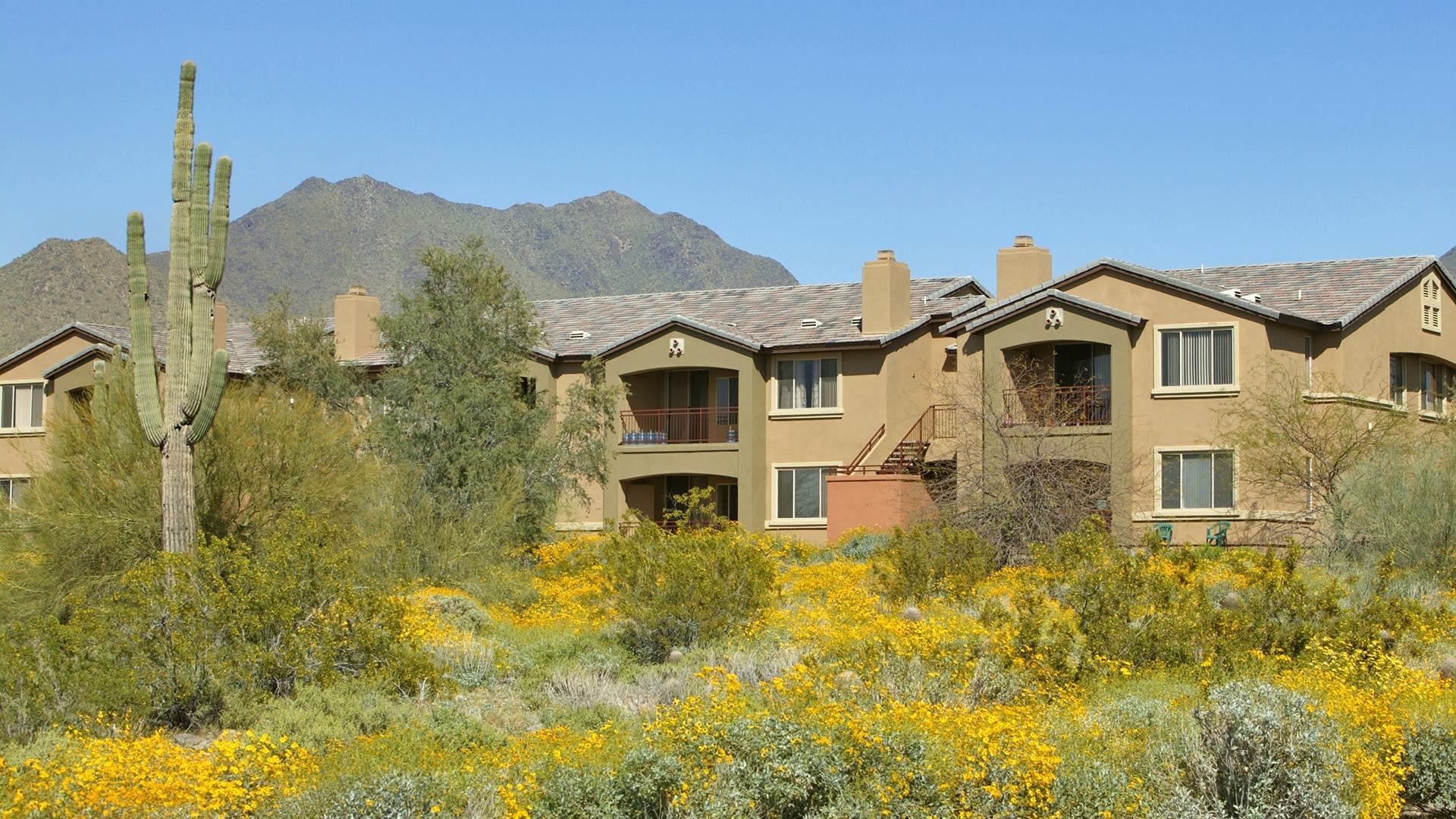 Dakota At Mcdowell Mountain Ranch In Scottsdale Az 888