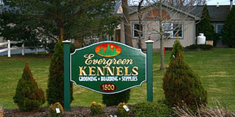 Evergreen Kennels
