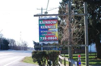 Rainbow Kennels image 4