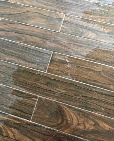 Coastal Carpet & Tile Cleaning