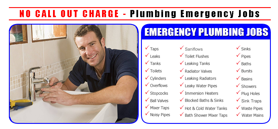 The Snake Guys Drain Cleaning Plumbing & Heating - ad image