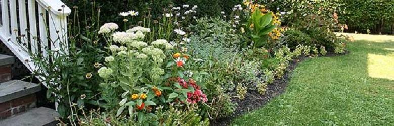 Tony Distefano Landscape Garden Center image 5