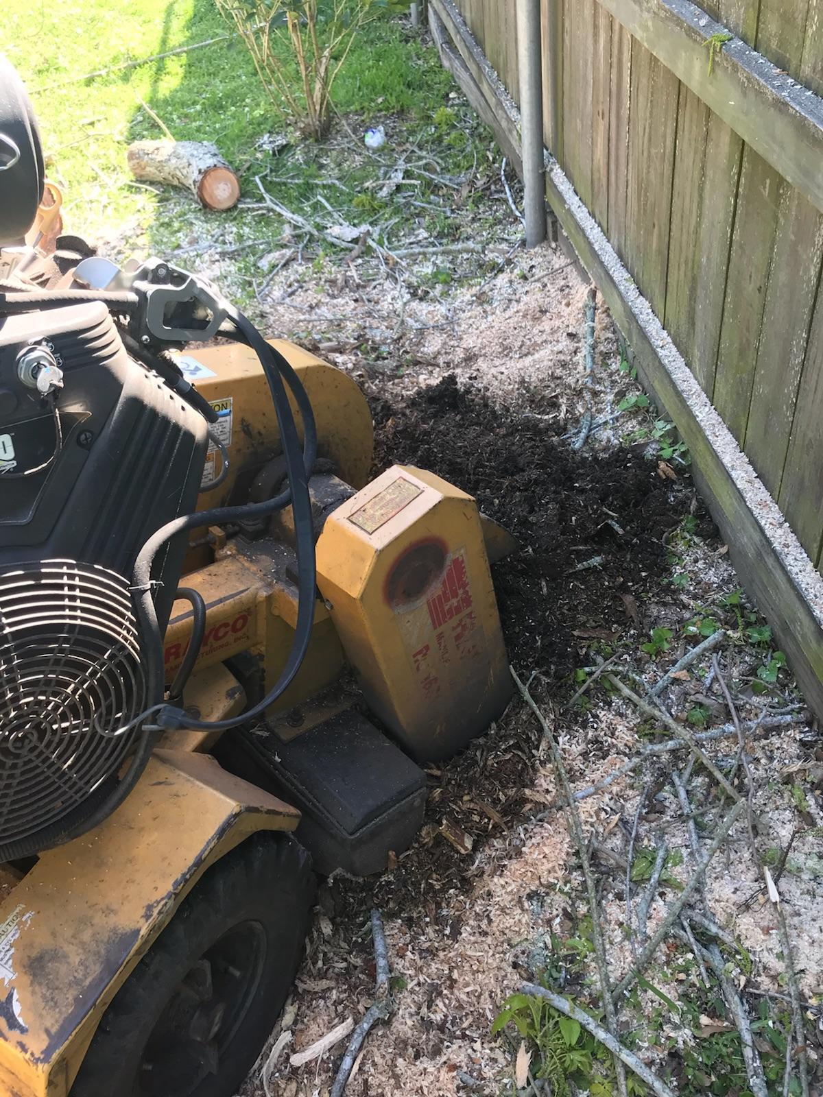 S & L Tree Service & Stump Grinding image 21