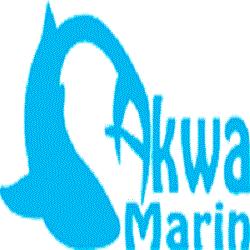 Akwa Marin Olivier Ossywa