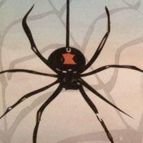 Professional Termite & Pest Services LLC image 1