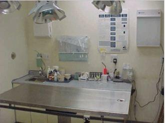 Basic Pet Care Animal Hospital - Dr. Peter Lugten image 7