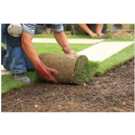 Lawn and garden services chittenango new york company for Lawn and garden services