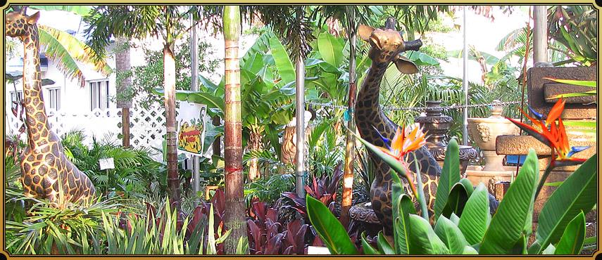 Williams Magical Garden Center & Landscape Inc image 2