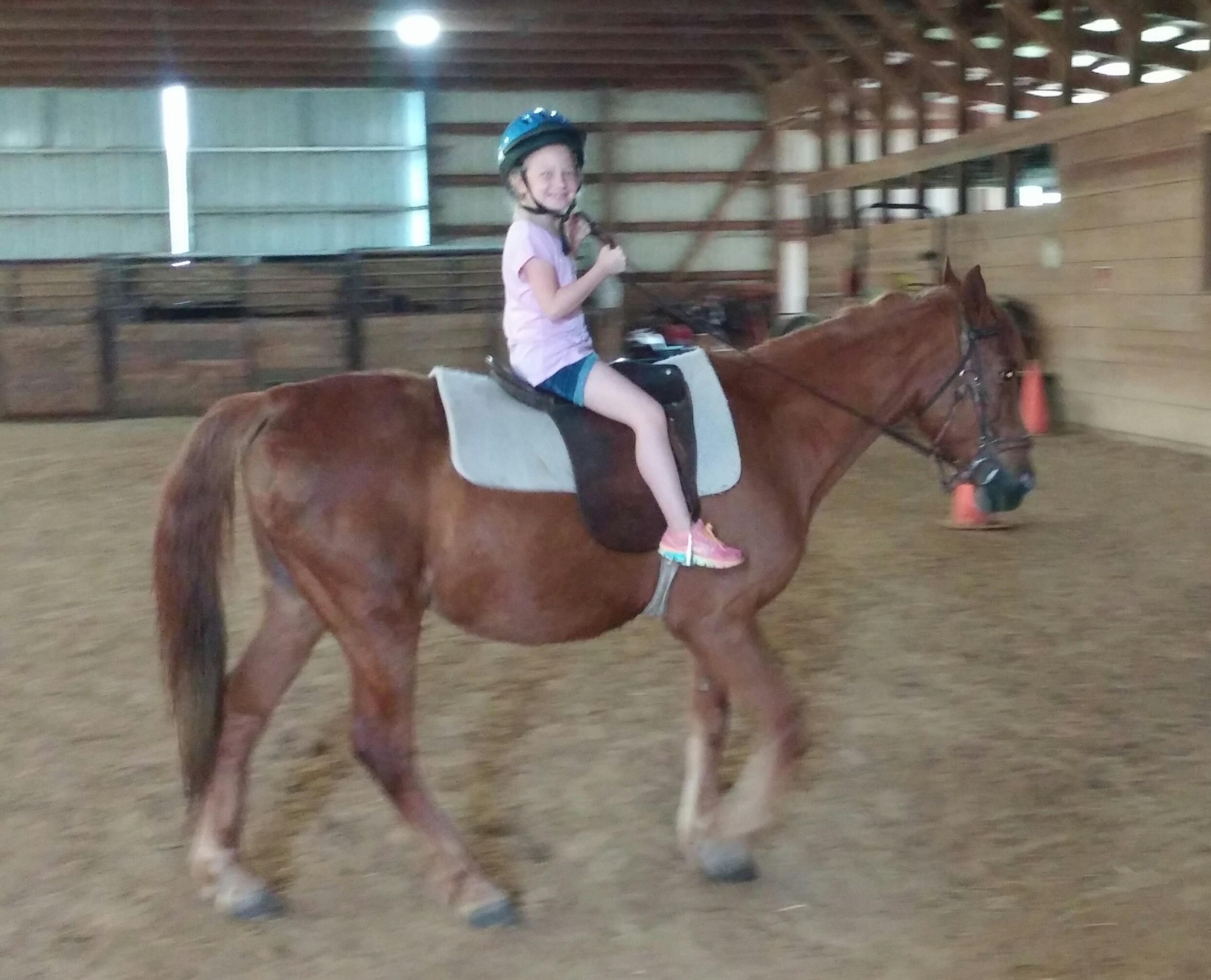 Wright-Way Equestrian Center Inc. image 9