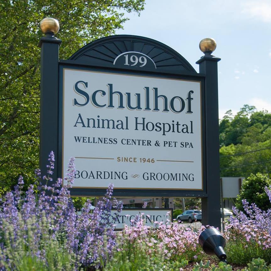 Schulhof Animal Hospital LLC
