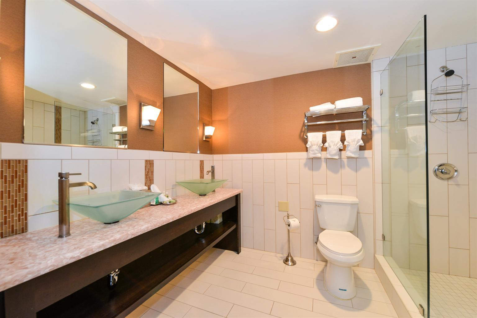 One King Bed Executive Suite Bathroom